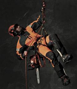 Husqvarna T540 Xp Chainsaw Honey Brothers Ltd