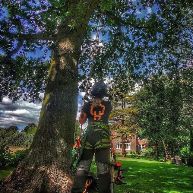 👩🗣Have your say - Women in Arboriculture Kit Survey   The Arboricultural Association has produced a survey to better understand what women in arb need from suppliers/manufacturers when it comes to kit.  They would appreciate your comments negative or positive:  💬 https://bit.ly/2VAaedU