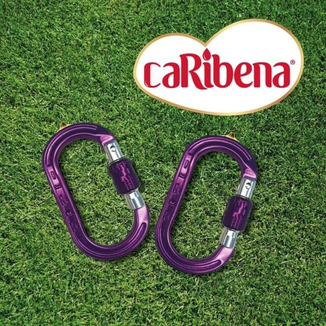 ☮️ Introducing the NEW XSRE DMM Professional screwgate caRIBENA's!    ⚡️ Rated to 4kN which is more than strong enough for any non-PPE function you can think of.    🏃‍♂️ Available now for £12.50 ex vat.    #honeybros #caribena #dmmwales #xsre #dmmcarabiner