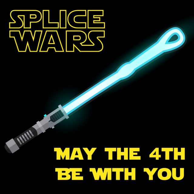 Happy Star Wars Day 🌠We at Honey Brothers have come up with a few arb puns for you. Hear us out...Splice Wars - A New Rope The Empire Splices Back Return of the Dead - Eye ... not forgetting Arb-2-D2Sorry we'll stop now. Have you got any others? 🤪#honeybros #splicewars #maythe4th #splicing #splicedrope #arborist #returnofthedeadeye #starwars