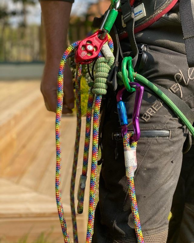 Add an explosion of colour to your kit with our new rainbow lanyards by @dmm_wales 🌈 💥Available with a Ceros carabiner or with a stitched eye to eye 👌#honeybrothers #honeybros #dmm #dmmlanyard #climbinglanyard #arb #arborist #arblife #arbgear #arbdealer #arboriculture #treesurgeon #treeclimber